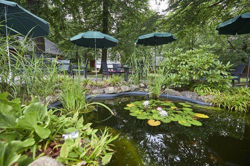 Kurpark hotel im ilsetal gmbh in ilsenburg harztourist for Gartenanlage mit teich